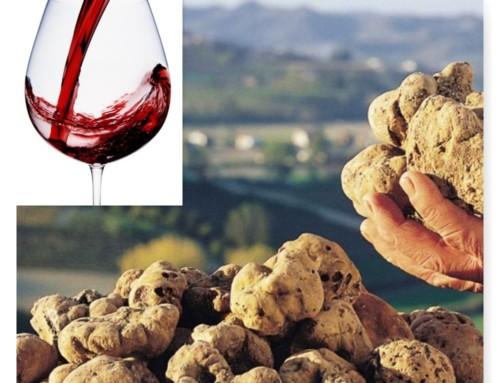 IL PIEMONTE, con GUIDA e AUTO: cibo & vino – Il tartufo e il Barolo