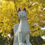 Kitsune divinità e tofu