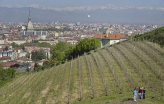 Balbiano - Villa della Regina - Torino